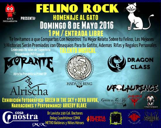 FELINO ROCK - Homenaje al gato - 8 de mayo.