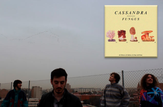 CASSANDRA, psicodelia desde Madrid