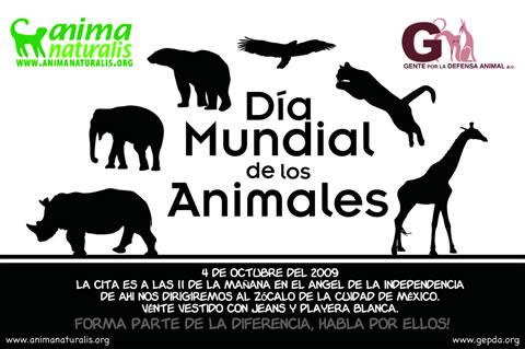 Gran Marcha por el Dia Mundial de los Animales - 4 Octubre 2009